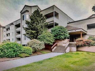 """Photo 1: 107 5294 204 Street in Langley: Langley City Condo for sale in """"Waters Edge"""" : MLS®# R2557346"""