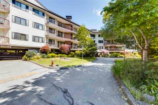 """Photo 1: 212 10160 RYAN Road in Richmond: South Arm Condo for sale in """"STORNOWAY"""" : MLS®# R2581547"""
