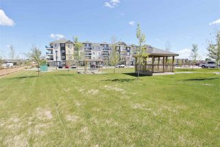"""Photo 17: 208 11205 105 Avenue in Fort St. John: Fort St. John - City NW Condo for sale in """"SIGNATURE POINTE II"""" (Fort St. John (Zone 60))  : MLS®# R2328673"""