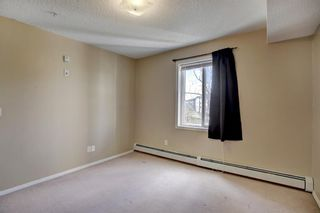 Photo 14: 309 4000 Somervale Court SW in Calgary: Somerset Apartment for sale : MLS®# A1100691