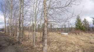 Photo 15: 2455 PARENT Road in Prince George: St. Lawrence Heights Land for sale (PG City South (Zone 74))  : MLS®# R2548505