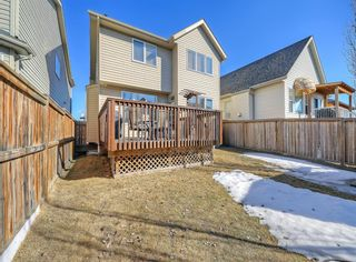 Photo 36: 148 Copperfield Common SE in Calgary: Copperfield Detached for sale : MLS®# A1079800