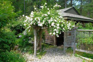 Photo 79: 855 Hope Spring Rd in : Isl Quadra Island House for sale (Islands)  : MLS®# 873398