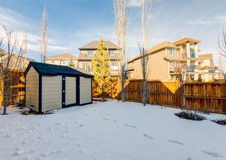 Photo 37: 291 Mahogany Manor SE in Calgary: Mahogany Detached for sale : MLS®# A1079762