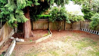 """Photo 20: 8154 CARIBOU Street in Mission: Mission BC House for sale in """"Caribou and Bobcat"""" : MLS®# R2004005"""