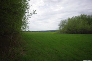 Photo 25: Weiss Lakefront Acreage in Big River: Lot/Land for sale : MLS®# SK834150
