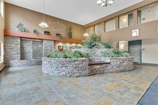 Photo 25: 228 10 Discovery Ridge Close SW in Calgary: Discovery Ridge Apartment for sale : MLS®# A1140043