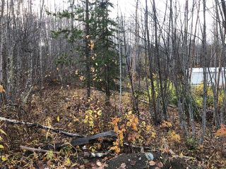 """Photo 2: LT 15- 20 22ND Avenue: Hazelton Land for sale in """"SOUTH HAZELTON"""" (Smithers And Area (Zone 54))  : MLS®# R2447716"""