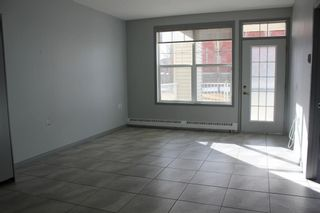 Photo 15: 126 4500 50 Avenue: Olds Apartment for sale : MLS®# A1076508