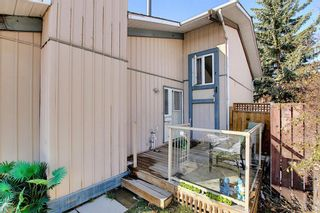 Photo 22: 348 TEMPLETON Circle NE in Calgary: Temple Detached for sale : MLS®# A1090566