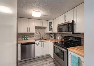 Photo 10: 402 1540 29 Street NW in Calgary: St Andrews Heights Apartment for sale : MLS®# A1141657