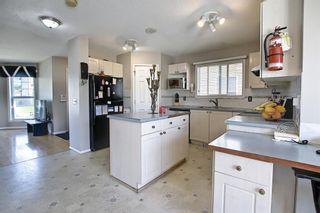 Photo 11: 327 Taravista Street NE in Calgary: Taradale Detached for sale : MLS®# A1125170