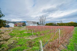 Photo 28: 35826 SOUTH PARALLEL Road in Abbotsford: Sumas Prairie House for sale : MLS®# R2520155