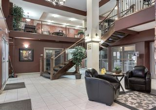 Photo 39: 327 45 INGLEWOOD Drive: St. Albert Apartment for sale : MLS®# A1085336