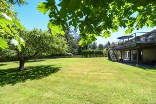 Photo 84: 5950 Mosley Rd in : CV Courtenay North House for sale (Comox Valley)  : MLS®# 878476