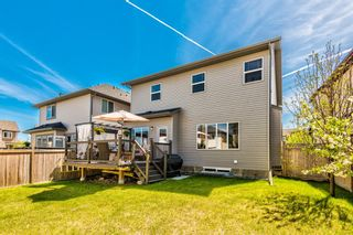 Photo 44: 7 KINGSTON View SE: Airdrie Detached for sale : MLS®# A1109347