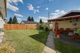 Photo 25: 3617 113 Avenue in Edmonton: Zone 23 House for sale : MLS®# E4261737