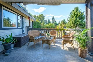 Photo 60: 3938 Island Hwy in : CV Courtenay South House for sale (Comox Valley)  : MLS®# 881986
