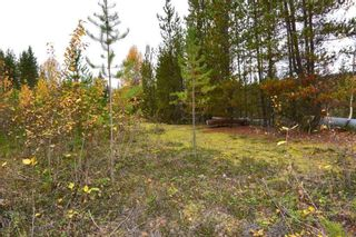 Photo 16: LOT A 37 Highway: Kitwanga Land for sale (Smithers And Area (Zone 54))  : MLS®# R2506362