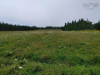 Photo 2: Lot Nollett Beckwith Road in Ogilvie: 404-Kings County Vacant Land for sale (Annapolis Valley)  : MLS®# 202120227