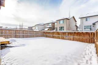 Photo 33: 1200 BRIGHTONCREST Common SE in Calgary: New Brighton Detached for sale : MLS®# A1066654