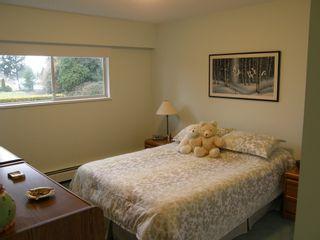 Photo 26: 20319 DEWDNEY TRUNK ROAD in MAPLE RIDGE: Home for sale : MLS®# V1044822