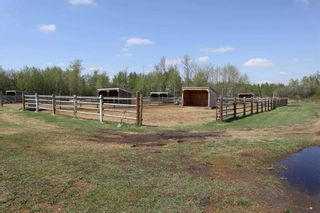 Photo 33: 48342 RR 262: Rural Leduc County House for sale : MLS®# E4231120