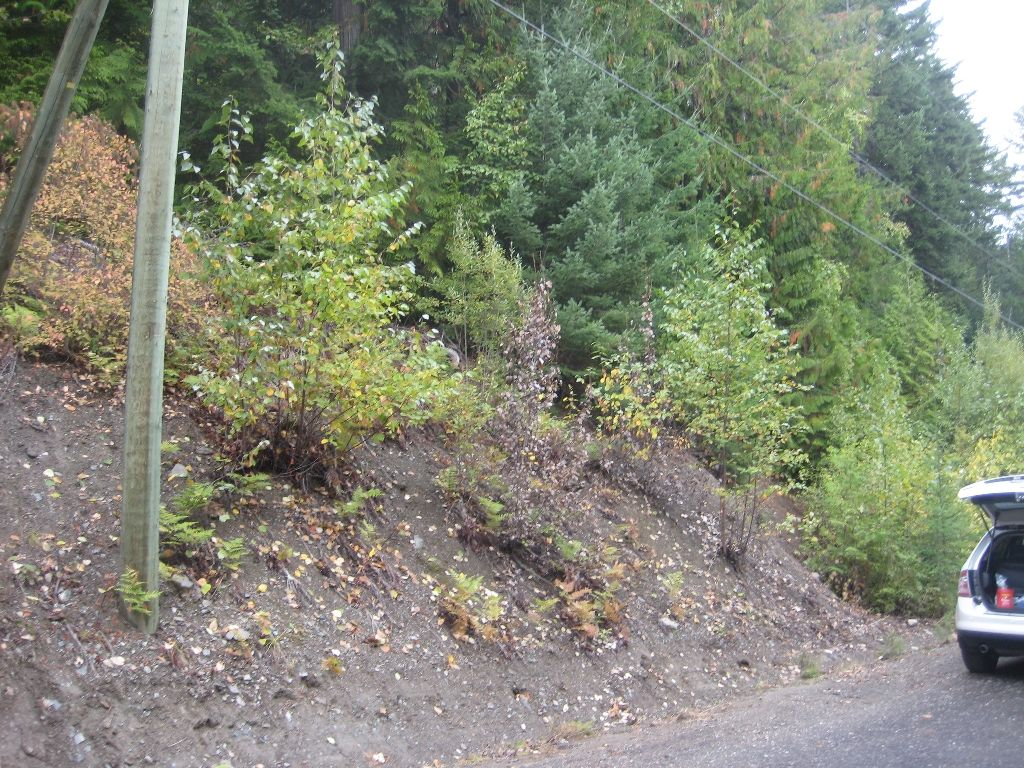 Main Photo: 13 Vickers Trail in Anglemont: Land Only for sale : MLS®# 10055804