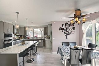 Photo 11: 6511 24 Avenue NE in Calgary: Pineridge Detached for sale : MLS®# A1152283