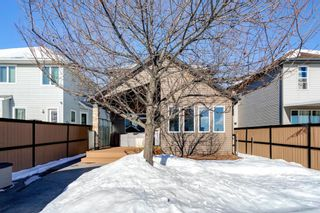 Photo 33: 134 Coverton Heights NE in Calgary: Coventry Hills Detached for sale : MLS®# A1071976