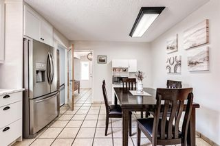 Photo 10: 459 Queen Charlotte Road SE in Calgary: Queensland Detached for sale : MLS®# A1122590