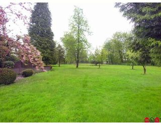 """Photo 9: 23050 76A Avenue in Langley: Fort Langley House for sale in """"FOREST KNOLLS"""" : MLS®# F2909694"""