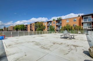 Photo 43: 406 501 57 Avenue SW in Calgary: Windsor Park Apartment for sale : MLS®# A1142596