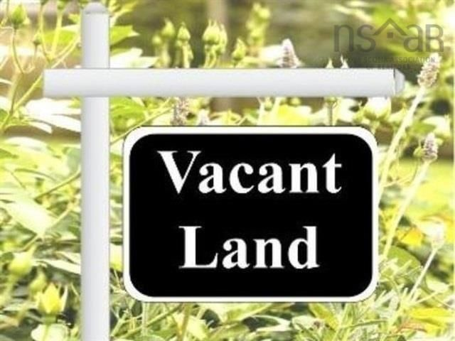 Main Photo: lot 154-155 Old Courthouse Branch Road in Bible Hill: 104-Truro/Bible Hill/Brookfield Vacant Land for sale (Northern Region)  : MLS®# 202125838