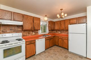 Photo 5: 519 Pritchard Rd in : CV Comox (Town of) House for sale (Comox Valley)  : MLS®# 874878