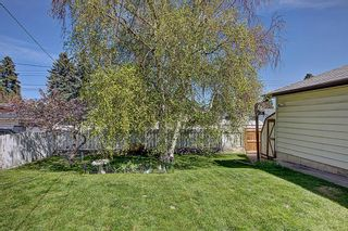 Photo 22: 9816 2 Street SE in Calgary: Acadia Detached for sale : MLS®# A1118342