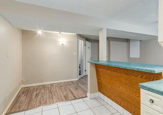Photo 15: 3135 Rae Crescent SE in Calgary: Albert Park/Radisson Heights Detached for sale : MLS®# A1139656