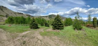 Photo 14: DL425 HIGHWAY 3 in Midway: Agriculture for sale : MLS®# 2459270