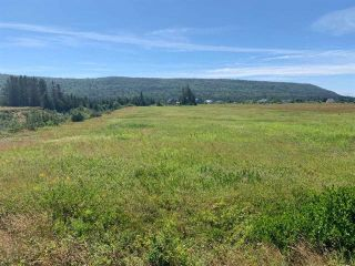 Photo 1: Hwy#209 Highway in East Advocate: 102S-South Of Hwy 104, Parrsboro and area Vacant Land for sale (Northern Region)  : MLS®# 202107456