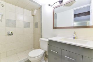 Photo 11: 154 Houde Drive in Winnipeg: St Norbert Residential for sale (1Q)  : MLS®# 202000804