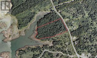 Photo 23: 96 Limekiln Road in Letang: Vacant Land for sale : MLS®# NB055632