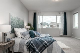 Photo 35: 57 CRANARCH Place SE in Calgary: Cranston Detached for sale : MLS®# A1112284