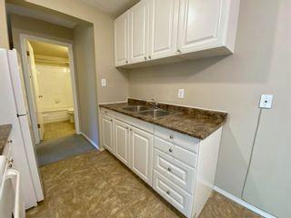 Photo 9: 305 10330 113 Street in Edmonton: Zone 12 Condo for sale : MLS®# E4250079