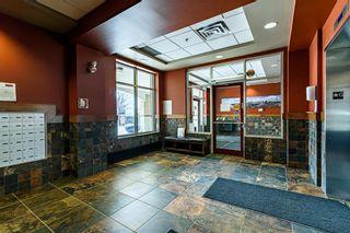 Photo 41: 310 147 Provencher Boulevard in Winnipeg: St Boniface Condominium for sale (2A)  : MLS®# 202111179