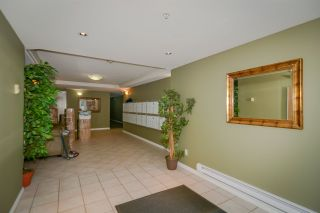 Photo 3: 208 22255 122 Avenue in Maple Ridge: West Central Condo for sale : MLS®# R2105719