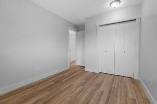Photo 20: 43 Castlefall Crescent NE in Calgary: Castleridge Detached for sale : MLS®# A1136695