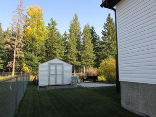 Photo 43: 1307 2 Street NE: Sundre Detached for sale : MLS®# A1038371