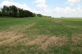 Photo 4: Twp Rd 592 Rg Rd 112: Rural St. Paul County Rural Land/Vacant Lot for sale : MLS®# E4263379