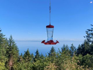 Photo 40: 432 East Point Rd in : GI Saturna Island House for sale (Gulf Islands)  : MLS®# 878261