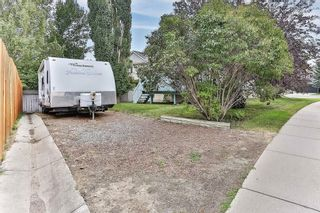 Photo 19: 51 SANDRINGHAM Way NW in Calgary: Sandstone Valley House for sale